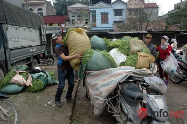 Xe rau này được vận chuyển từ nơi khác đến chợ rau Vân Trì bán.