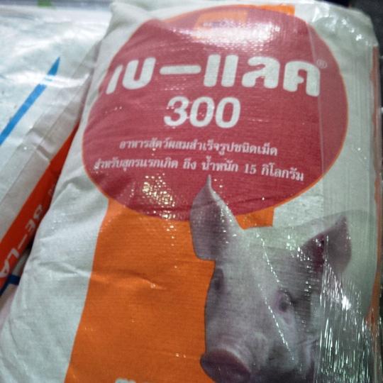 Thức ăn chăn nuôi hiệu Belac 300-10 kg do Thái Lan sản xuất đã hết hạn sử dụng ngày 6-3-2016