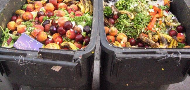 Thực phẩm dư thừa sẽ phải quyên góp từ thiện, không được phép vứt bỏ