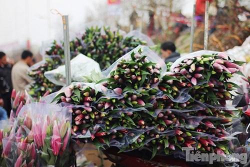 Chợ hoa Tết Quảng Bá những ngày này tràn ngập hoa ly. Theo các chủ cửa hàng, hoa ly được bán tại đây có nguồn gốc chủ yếu từ Tây Tựu và Đà Lạt.