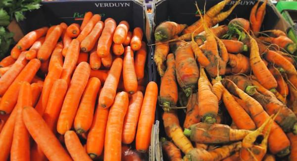 Các siêu thị vứt đi phần lớn rau củ quả có vẻ ngoài không đẹp