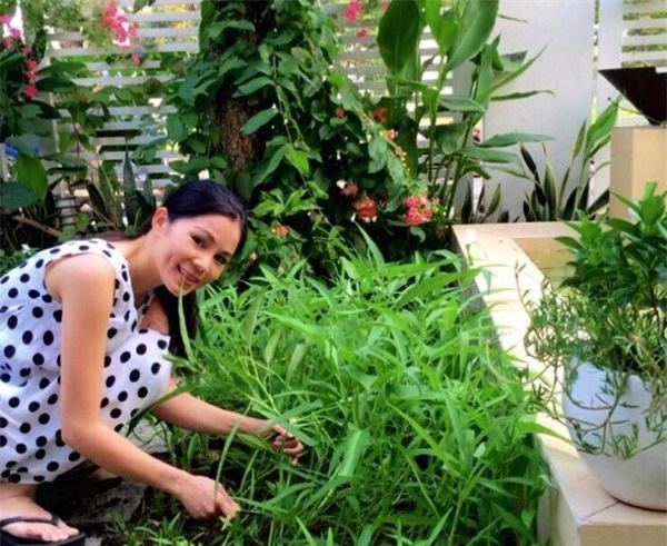 Hàng ngày, Quyền Linh vẫn bận rộn với công việc dẫn chương trình nên mọi việc trong nhà đều do một tay bà xã Dạ Thảo chu toàn.