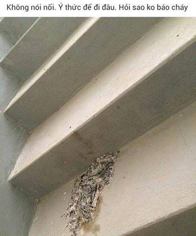 Hóa vàng ngay ở cầu thang bộ (ảnh chụp màn hình trong group chung cư).