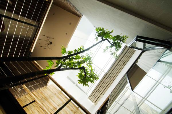 Phần mái kính là không gian đặc biệt giúp mang ánh sánh thiên nhiên tràn ngập khắp các căn phòng.