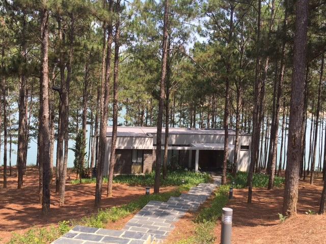 Biệt thự giữa rừng thông nhìn xuống Hồ Tuyền Lâm