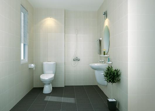 Với một chiếc gương to phòng tắm nhà bạn sẽ trở nên rộng hơn rất nhiều