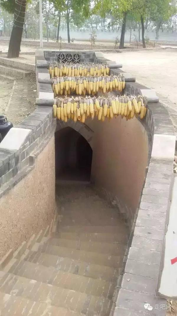 Còn đây là lối dẫn từ ngôi nhà lên trên mặt đất.