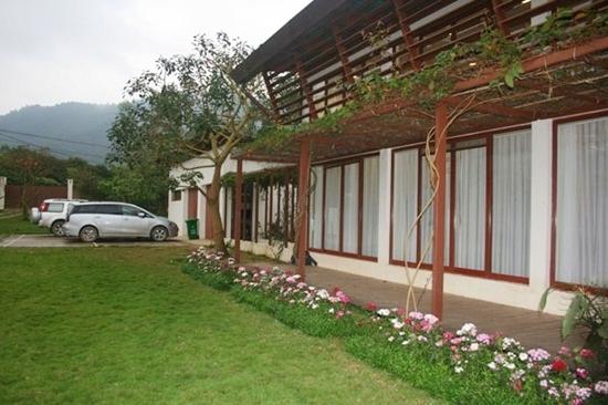 Kết cấu căn nhà chủ yếu là gỗ và kính để phát huy tối đa việc chan hòa với thiên nhiên.