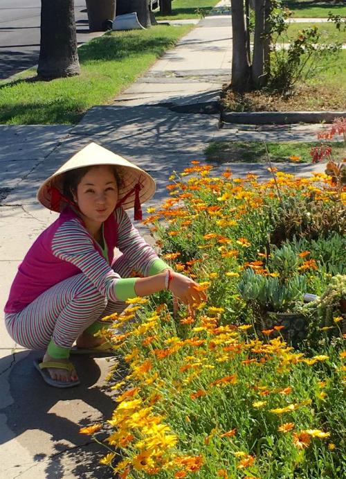 Cô chia sẻ rằng, thời tiết nơi cô sống đẹp như Đà Lạt ở Việt Nam nên dù không tốn nhiều công sức nhưng khu vườn trong nhà luôn rực rỡ.