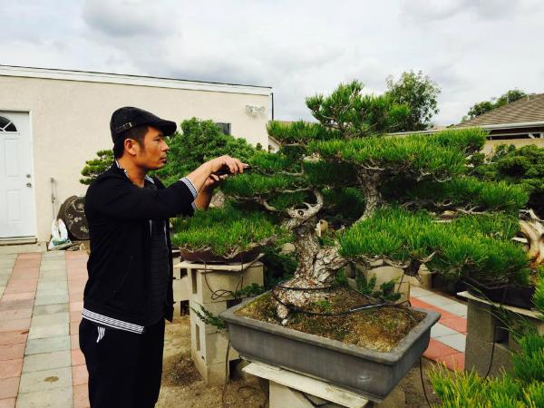 Tự tay chăm chút cho cây cảnh là sở thích của Bằng Kiều.