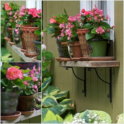 Hoặc bạn cũng có thể sắp xếp những chậu hoa bên ngoài cửa sổ.