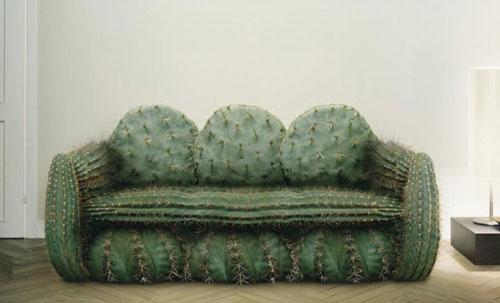 Liệu có vị khách nào dám ngồi lên sofa xương rồng này?