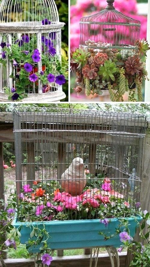 Trước đây nhà bạn có nuôi chim cảnh nhưng giờ thì đang để không, hãy dùng nó để làm chậu trồng hoa!.