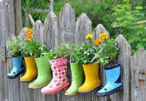 Những đôi ủng nhựa, giày thể thao, giày da… đã mòn vẹt, hư hỏng cũng là một chỗ chứa… đất khá tốt để trồng hoa, cây cảnh.
