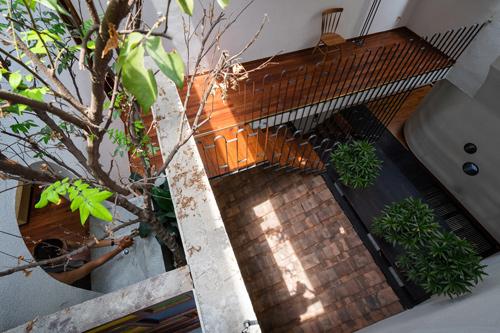 Cây cối là điểm cân bằng giữa các khối hình và vật chất của ngôi nhà, mang lại cảm giác cân bằng.