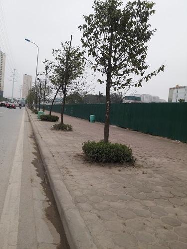 Dự án quây tôn chạy dọc đường Tố Hữu