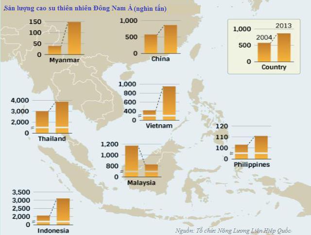 Sản lượng cao su thiên nhiên Malaysia ngày nay chỉ bằng gần một nửa thời hoàng kim, nhưng các nông trường cọ dầu lại có lợi nhuận ổn định. Dầu cọ thường được sử dụng để sản xuất xà phòng.