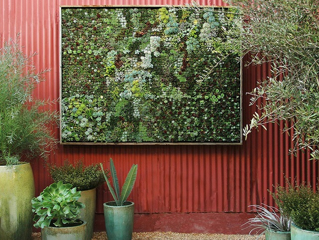 Bạn cũng có thể tự làm bức tranh cây cỡ bự như thế này để treo trong sân vườn nhà bạn.