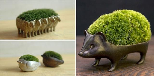 Những con vật mọc đầy rêu trên mình thế này sẽ làm cho nhà bạn thêm xanh mát và lạ mắt.