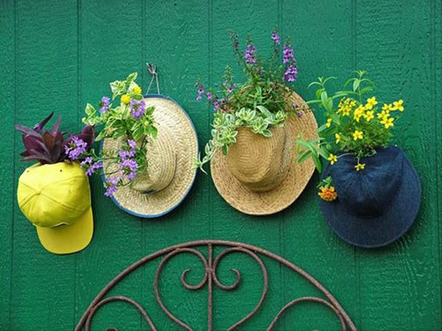 Thật tuyệt vời khi những chiếc mũ trong nhà bạn lại có thể nở hoa đầy màu sắc.