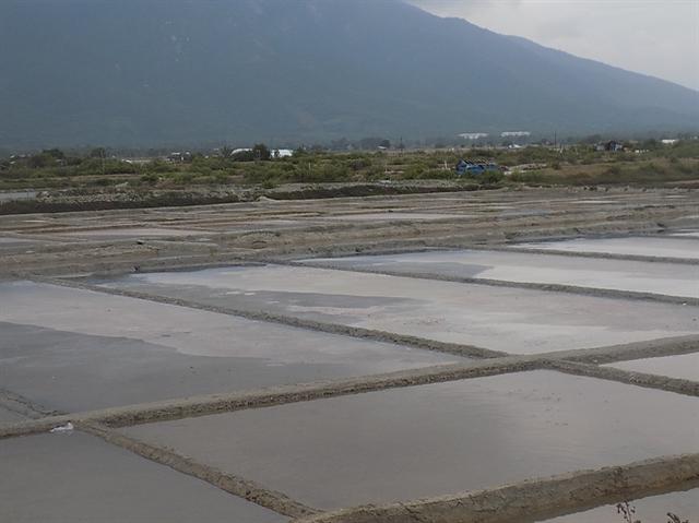 Hiện nay giá muối thấp nên không kích thích được diêm dân ra đồng SX