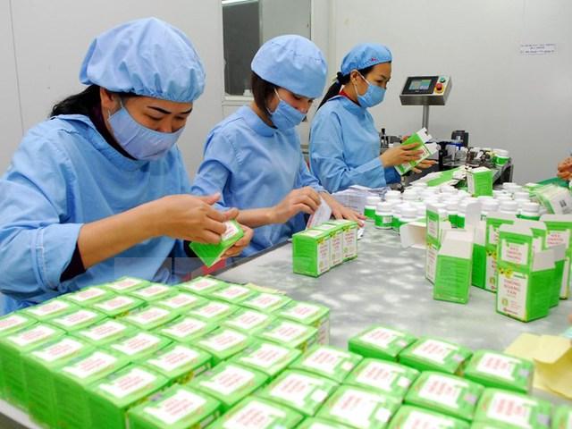 Dây chuyền đóng gói các sản phẩm dược được chiết xuất từ các dược liệu. (Ảnh: Danh Lam/TTXVN)