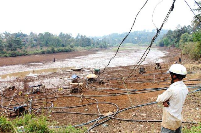 Hàng ngàn ha cà phê tại Đắk Lắk đang thiếu nước tưới