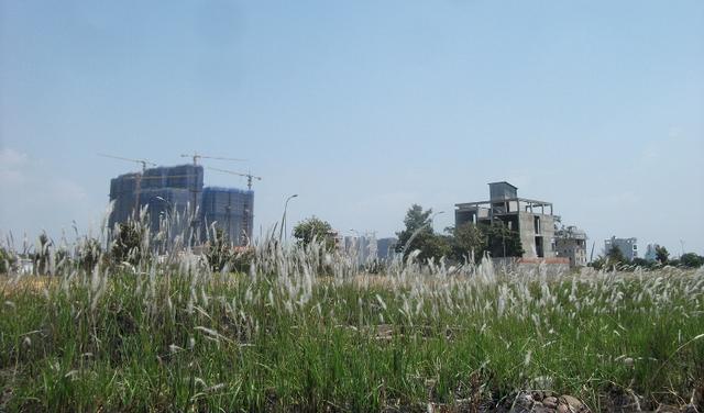 Những hình ảnh thường thấy tại trung tâm BĐS của TP.HCM - khu Đông.