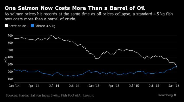 Giá dầu và giá cá hồi tính theo đồng krone