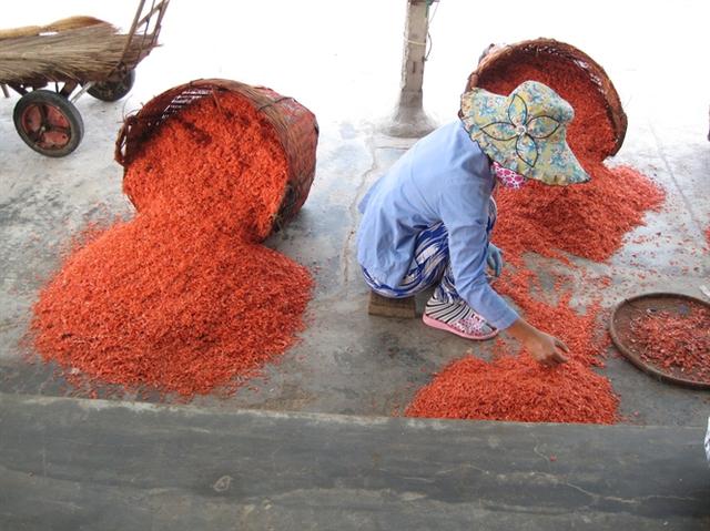 Nữ lao động cần mẫn lượm rác lẫn trong ruốc khô nhuộm màu