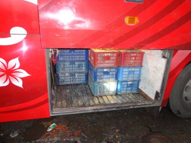 Trứng gà đựng trong khay nhựa để dưới gầm xe - Ảnh: Trạm Kiểm dịch động vật Xuân Hiệp cung cấp