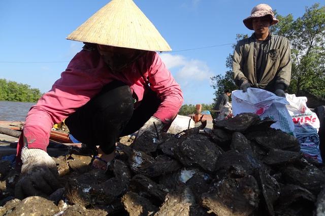 Bà Lê Thị Thắm: Tôi mất ăn mất ngủ, bạc cả đầu