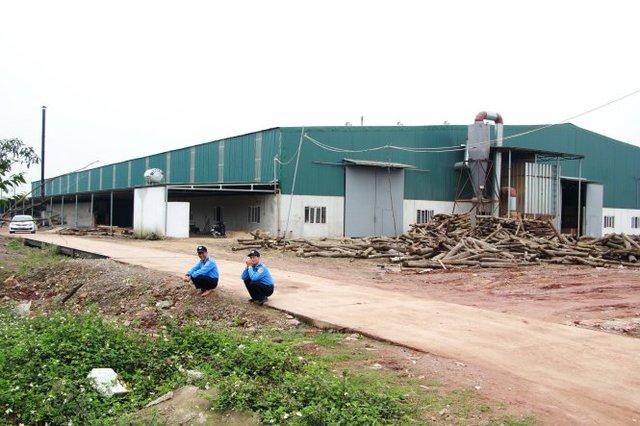 Công ty cổ phần thế giới gỗ Việt Nam - nơi có hơn 200 công nhân nghỉ việc đồng loạt - Ảnh: Doãn Hòa