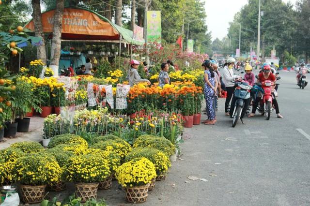 """Cúc mâm xôi xuất hiện """"khiêm tốn"""" tại chợ hoa - Ảnh: Mạnh Khang"""