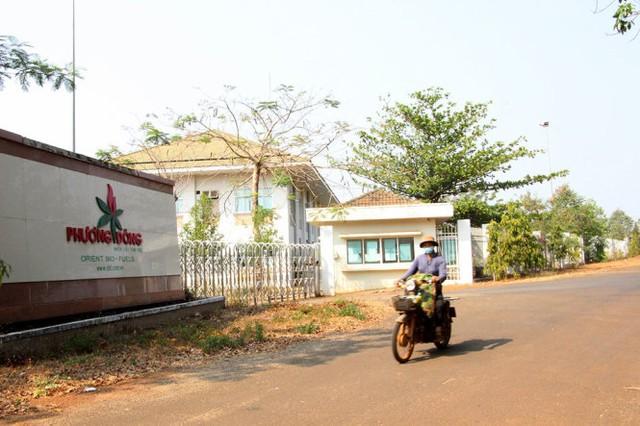 Nhà máy ethanol ở huyện Bù Đăng, Bình Phước chỉ mới vận hành thử nghiệm một thời gian rồi... đóng cửa - Ảnh: Bùi Liêm