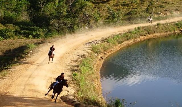 Dự án đầu tư trang trại và phát triển chăn nuôi gia súc kết hợp du lịch sinh thái tại huyện M'Đrắk được tỉnh đồng ý chủ trương năm 2004, sau 11 năm vẫn là mớ hỗn độn.