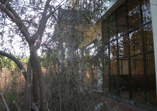 Những biệt thự ở đây có căn đã hoàn thiện, căn đang xây dang dở, tất cả đều bỏ hoang từ nhiều năm nay rất vắng vẻ, cỏ mọc um tùm và dây leo chằng chịt.