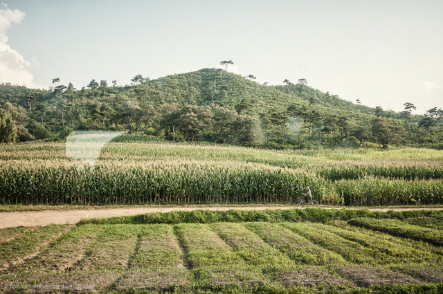 Triều Tiên vẫn giữ được vẻ đẹp hoang sơ của tự nhiên