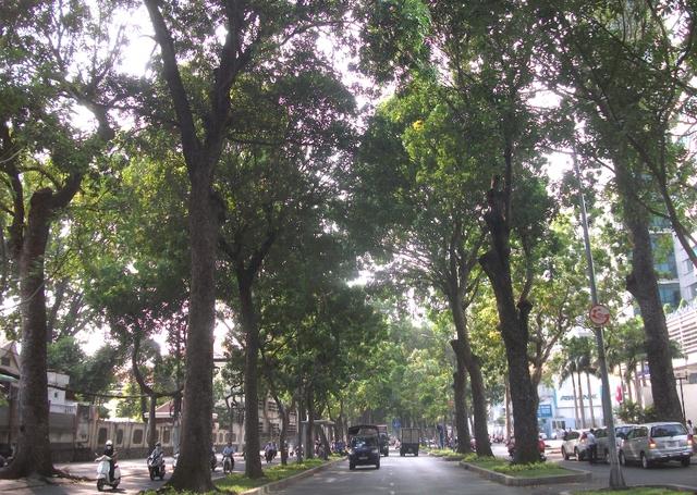 Đây là tuyến đường tuy ngắn, chỉ hơn 500m nhưng mang nhiều ý nghĩa lịch sử của hơn 300 năm phát triển của Sài Gòn.