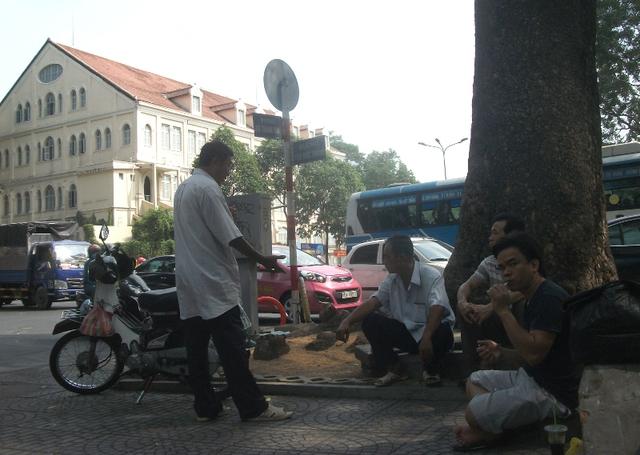 Mấy bác xe ôm suốt ngày cũng nói đến việc đốn hạ cây cổ thụ trong câu chuyện của mình.