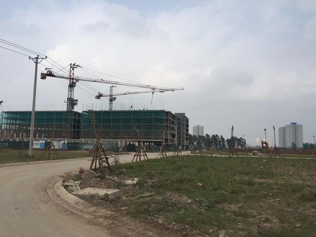 Giá bán đất nền dự án dao động từ 20-23 triệu đồng/m2, tùy từng vị trí