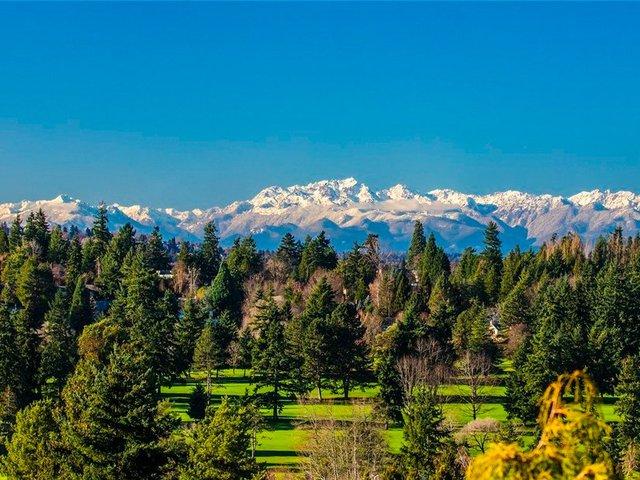 Từ sân sau, bạn có thể thấy đường chân trời của Seattle, hồ Washington và dãy núi Olympic.