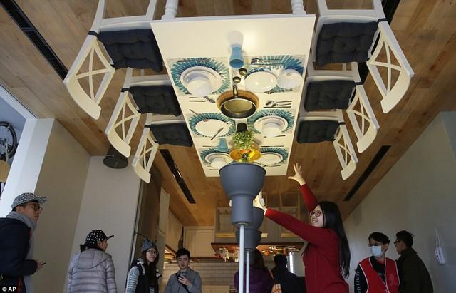 Ngôi nhà này đã mở cửa đón du khách tham quan từ hôm thứ 7 và nó đã hoàn toàn chinh phục được du khách bởi lối thiết kế độc đáo.