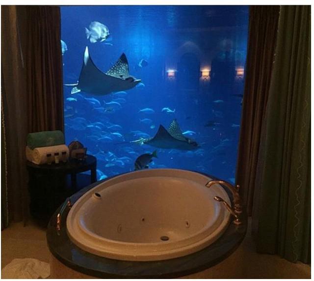 Mang cả đại dương vào phòng khách sạn
