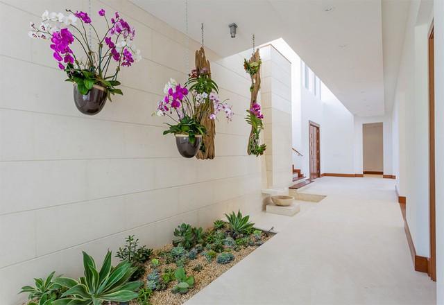 Những hành lang đi vào hay đi ra ngôi nhà đều có thể sử dụng giải pháp trang trí này, rất đẹp và ấn tượng nếu như dọc lối đi nhà bạn ngập tràn sắc màu của cây xanh tự nhiên.