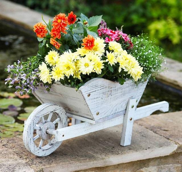 Chiếc xe đẩy phiên bản thu nhỏ như thế này cũng là một gợi ý để bạn có thể sử dụng cho những sân vườn nhỏ với diện tích khiêm tốn.