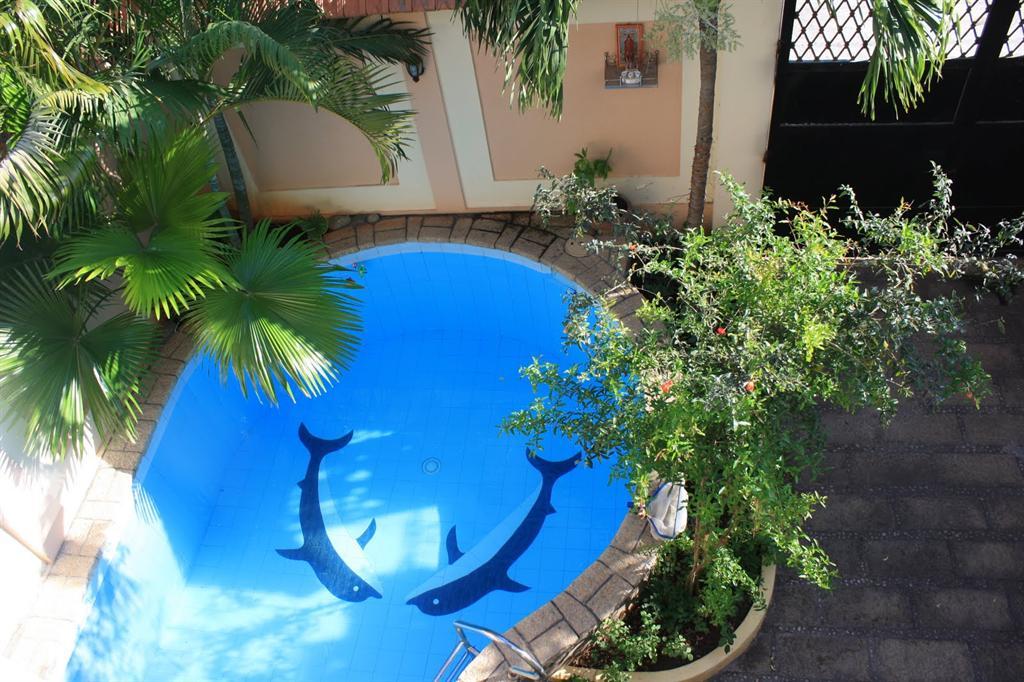 Đẹp lung linh với bể bơi (5)