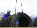 TLH: Năm 2012 lãi 41,4 tỷ đồng, thực hiện 40% kế hoạch năm