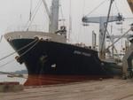 VNA: Bán tàu, quý 4 lãi ròng gần 20 tỷ đồng, cả năm lỗ