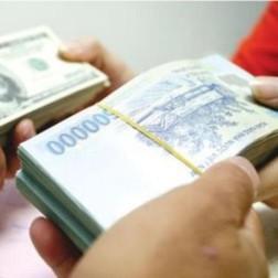 Đô la hóa và tỷ giá hối đoái của Việt Nam